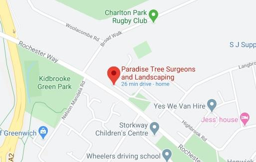 Paradise tree surgeons location